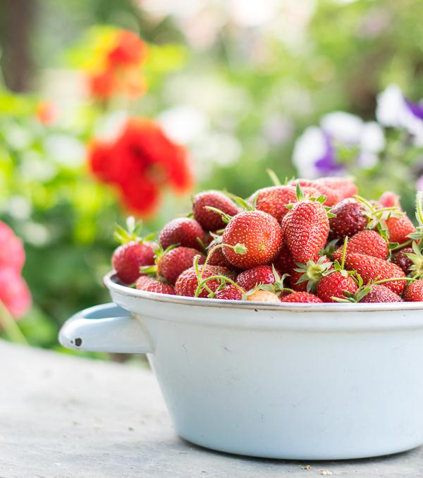 strawberrries (1 of 1)
